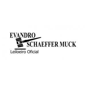 Evandro Schaeffer Muck